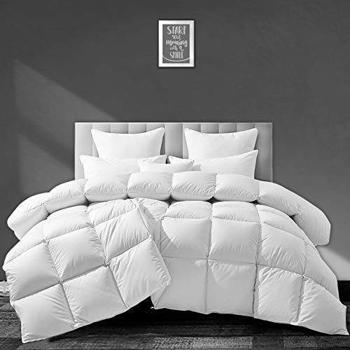 APSMILE European Goose Down Comforter King Size Luxurious All Seasons Duvet Insert -1600TC Ultra-Soft Egyptian Cotton, 55 Oz 750 Fill Power Fluffy Medium Warmth, Solid White