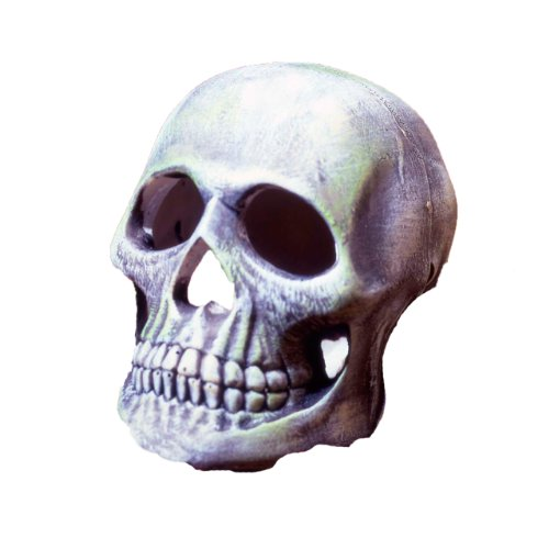 Penn Plax Deco Replicas Human Skull Aquarium Décor (Plax Penn Deco)