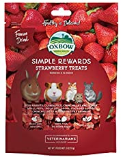 (15g) Oxbow Heathy Treats Simple Reward (Strawberry)