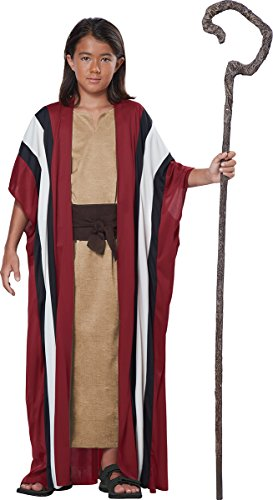 Shepherd Dress Up (California Costumes Shepherd/Moses Boy Costume, One Color, Large/X-Large)