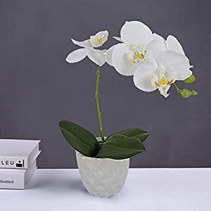 White Silk Artificial Orchids Arrangements with Ceramic vase for Decoration Fake Flowers for Table Centerpiece Home Decor Office Wedding Party Vivid Lifelike