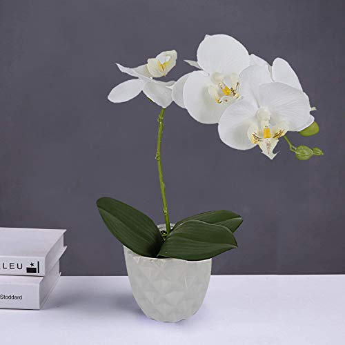 LIVILAN Artificial Flower Arrangement Phalaenopsis Orchid Silk Fake Flower with Decorative Ceramic White Vase Vivid Potted Orchid Plant,White -