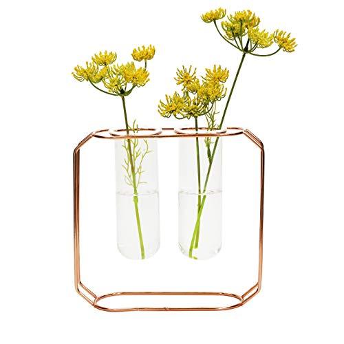 - NCYP Modern Minimalist Trendy Geometric Desktop Indoor Crystal Clear Glass Tube Vase with Rose Gold Iron Rack Holder Metal Stand