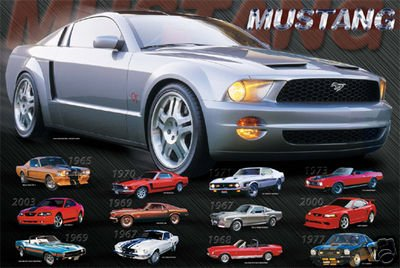 Mustang Evolution Poster - MUSTANG EVOLUTION Collage POSTER history car RARE 16X20