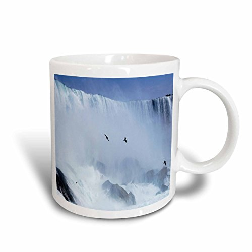 3dRose Famous Niagra Falls Straddling NY and Canada Ceramic Mug, - Falls Outlet Niagra