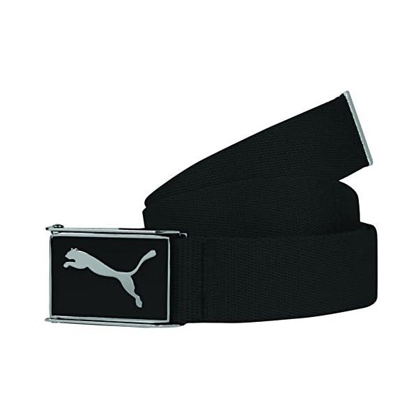Puma-Golf-Cuadrado-20-Web-Belt