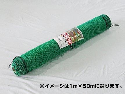 アニマルネット(防獣ネット) 16mm目 2m×50m(2本入り) B008GZV2QC