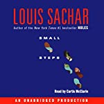 Small Steps | Louis Sachar