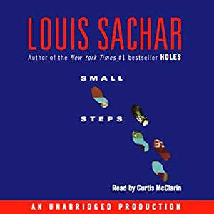 Small Steps Audiobook