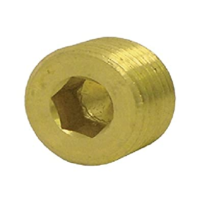 "Tectran 118-B Countersunk Hex Head Plug (Brass, 1/4"" Pipe Thread, Pack of 10): Automotive [5Bkhe2001517]"