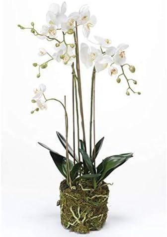 Phalaenopsis artificielle PABLA en motte 80cm fleur artificielle orchidée