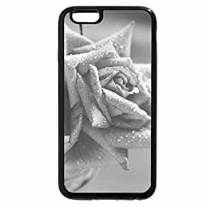 iPhone 6S Case, iPhone 6 Case (Black & White) - Rose, rose...