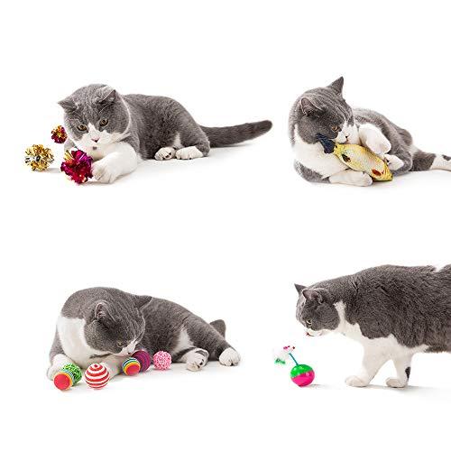 Cat Toys Interactive Kitten Toys 5