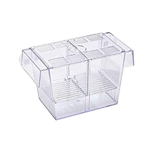 Tfwadmx Aquarium Fish Breeder BoxHatchery Incubator, Large Acrylic Fish Isolation Box for Crawfish Guppy Betta (7.8 in) 4