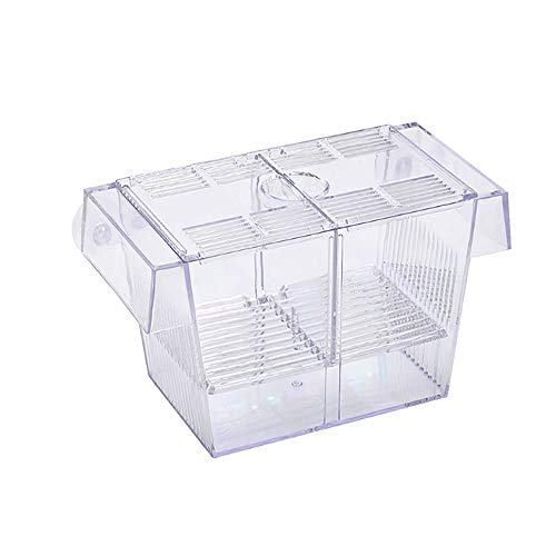 Tfwadmx Aquarium Fish Breeder Box Hatchery Incubator, Large Acrylic Fish Isolation Box for Crawfish Guppy Betta Eels Crab Fish Tank ()