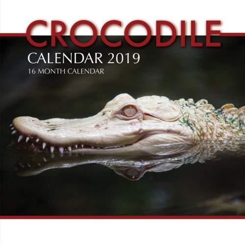 Crocodile Calendar 2019: 16 Month Calendar