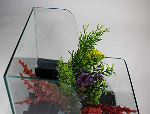 Filter LED Light Desktop Size Penn Plax Aqua Terrarium Planting Tank with Aquarium for Fish 1.85 Gallon Waterfall