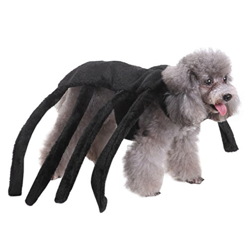 JudyBridal Puppy Dog Spider Costume Pet Cat Apparel for Halloween Cosplay Christmas Decoration L