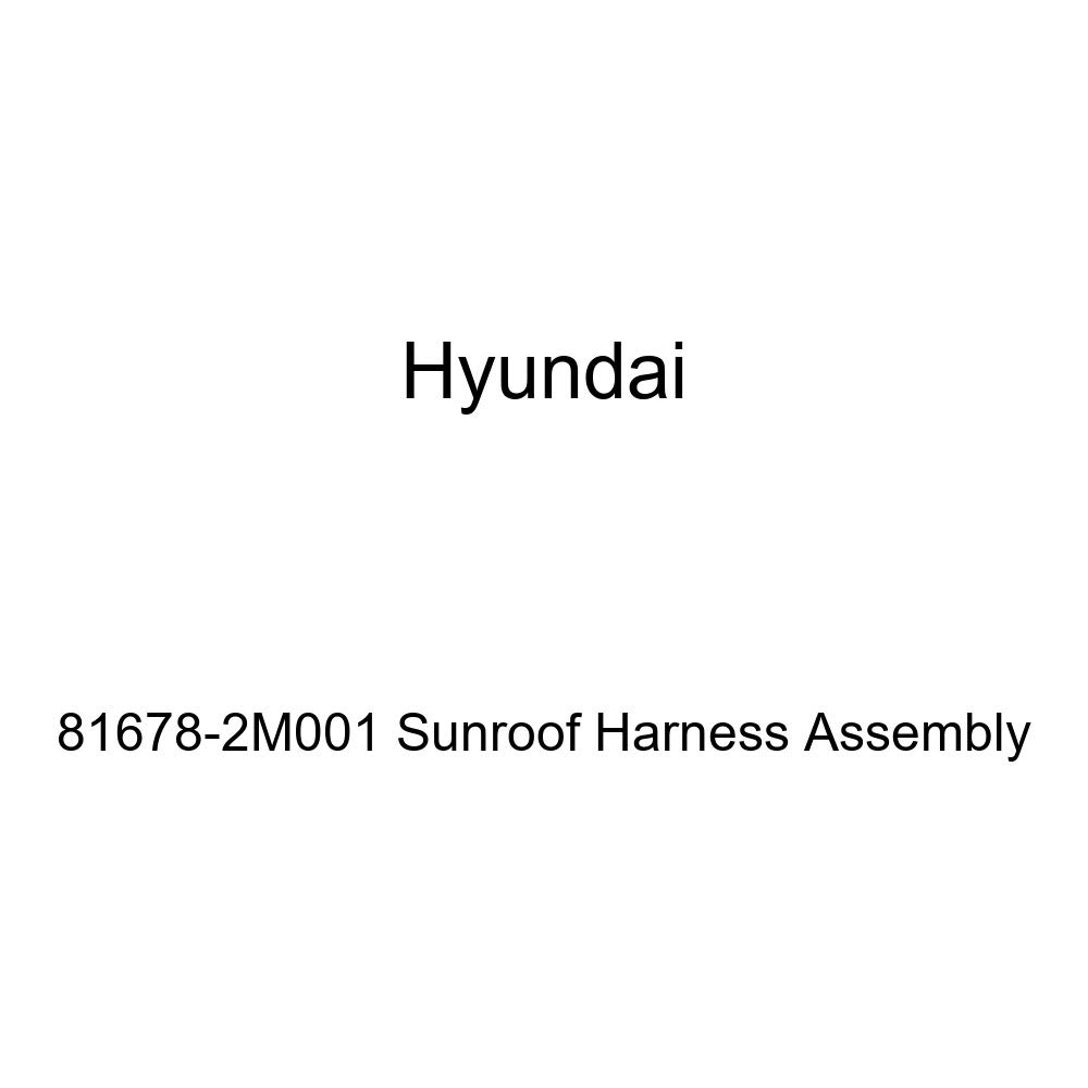 Genuine Hyundai 81678-2M001 Sunroof Harness Assembly