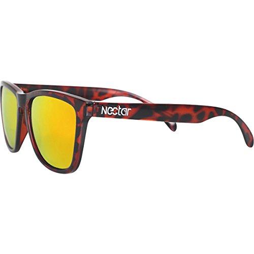 Nectar Polarizied Wayfarer Bombay Brown Tortoise / Orange Sunglasses