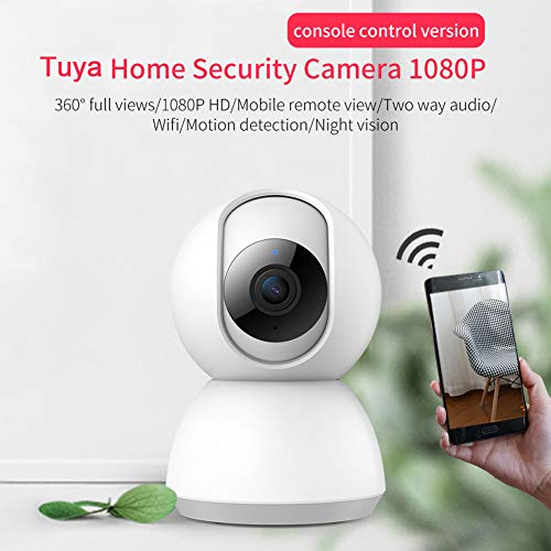 YTBLF Home WiFi Camera, 360° Panorama / 1080P HD/Mobile Remote View/Two-Way  Audio/Wireless/Dynamic Detection/Night Vision