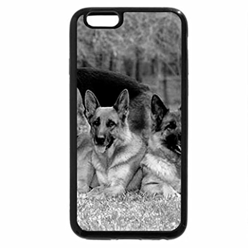 iPhone 6S Plus Case, iPhone 6 Plus Case (Black & White) - Whole dog family