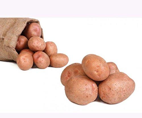 Kartoffeln Laura Speisekartoffeln 25kg Amazonde Lebensmittel