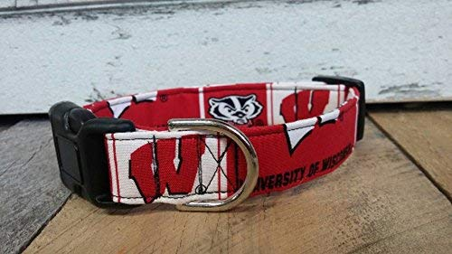 University of Wisconsin Badgers dog collar buckle or martingale with leash set option ()