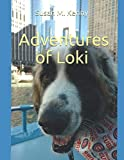 Adventures of Loki