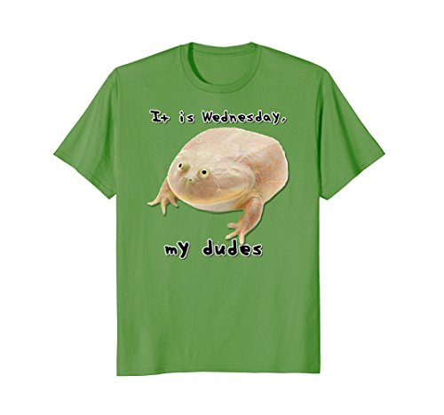 It is Wednesday My Dudes - Frog Meme Shirt