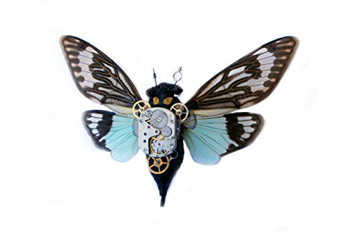 Real Steampunk Cicada Insect Taxidermy Art- Taxidermy Insects, Steampunk Gifts For Him, Steampunk Gifts For - Steampunk For Gifts Him