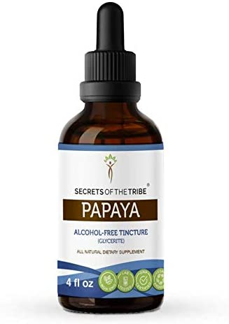 Papaya Alcohol-Free Liquid Extract, Organic Papaya Carica Papaya Dried Leaf 4 FL OZ