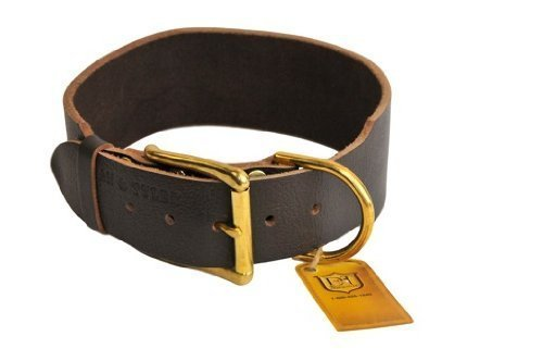 "Dean and Tyler ""B and B"", Basic Leather Dog Collar with Solid Brass Hardware – Brown – Size 18-Inch by 1-1/2-Inch – Fits Neck 16-Inch to 20-Inch"
