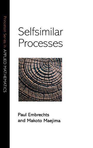 Selfsimilar Processes (Princeton Series in Applied Mathematics)