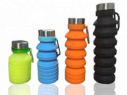 Riverside Water Bottle 18.6fl oz, Collapsible Silicone with a Carabiner ()