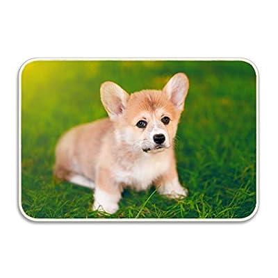 Kerr Juliet Welcome Doormat Cute Dog Entrance Floor Mat Rug Indoor/Front Door/Bathroom/Kitchen