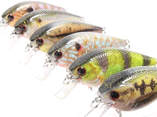 6 Hard Baits Fishing Lures in One Tackle Box Crankbait RealSkin Painting for Bass Fishing HC15KB