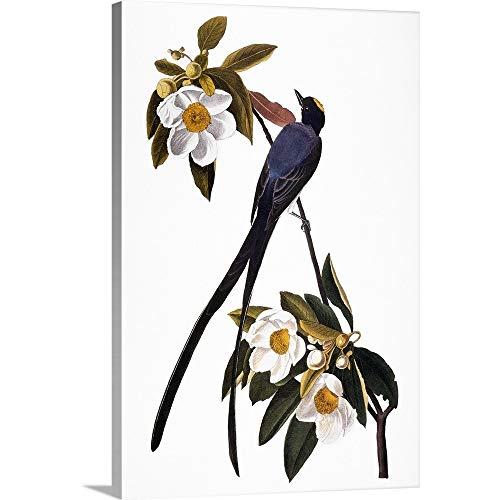 Fork John James Audubon (John James (1785-1851) Audubon Premium Thick-Wrap Canvas Wall Art Print entitled Audubon: Flycatcher 20