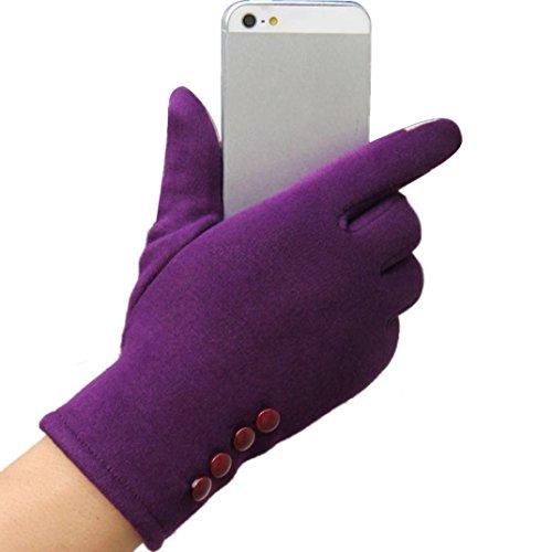 Women's Touch Screen Gloves,Hemlock Lady's Winter Outdoor Sport Warm Cotton Gloves (Purple)