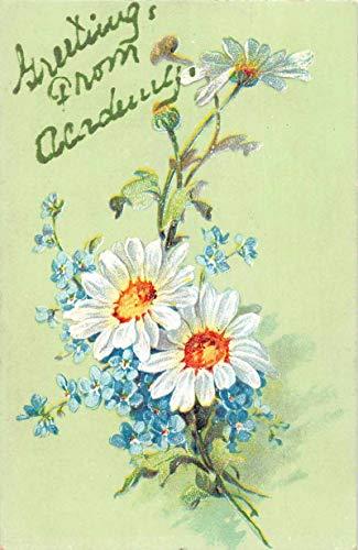 Academy West Virginia Greetings Daisy's and Blue Flowers Postcard JA4742614