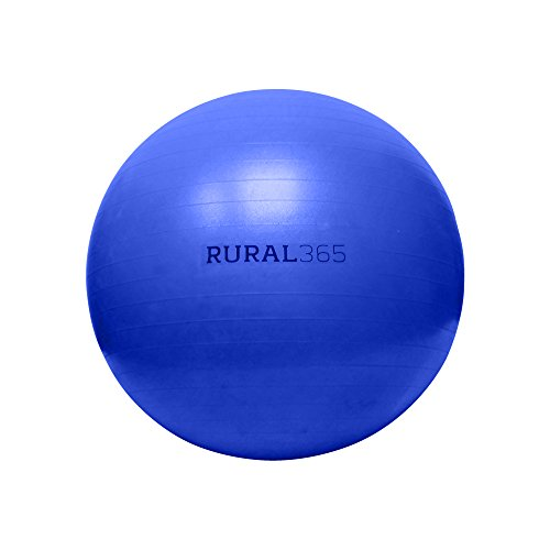 "Rural365 Large Horse Ball Toy in Blue, 40"" Inch Ball Anti-Burst Giant Horse Ball – Horse Soccer Ball, Pump Included"