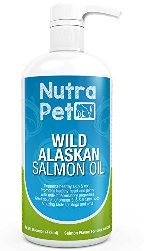 Best Fish Oil For Dogs Arthritis