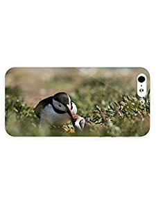 3d Full Wrap Case for iPhone 5/5s Animal Cute Puffins by runtopwell