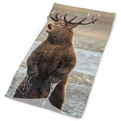 Bear Moose Deer Original Headband with Multi-Function Sports and Leisure Headwear UV Protection Sports Neck, Sweat-Absorbent Microfiber Running, Yoga, Hiking