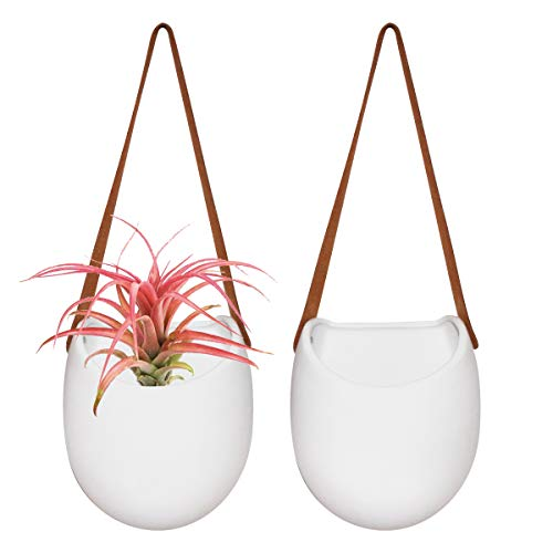 Wall Hanging Planters - Modern Wall Decor 7.5