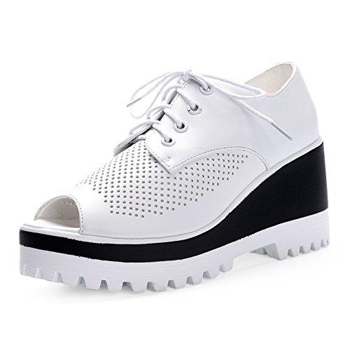 verano peces boca zapatos mujeres/Zapatos del alto talón/zapatos de plataforma hueco/sandalias cómodas/Zapatos de mujer romana plataforma aumenta A