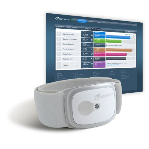 BodyMedia CORE Weight Management System
