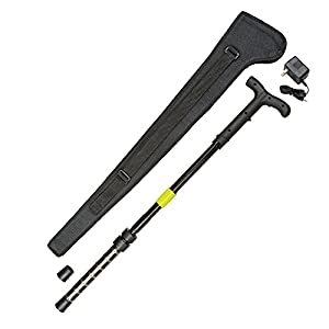 4. ZAP ZAPCANE Cane - 1 Millionv Stun Gun Walking Cane with Flashlight & Carrying Case, Black