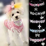 "HOW'S YOUR DOG ""Bling-a-licious"" Name-Me Personalized Necklace for Dogs and Cats – Size Small, My Pet Supplies"