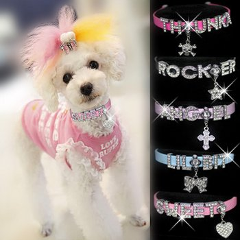 """HOW'S YOUR DOG """"Bling-a-licious"""" Name-Me Personalized Necklace for Dogs and Cats – Size Small, My Pet Supplies"""